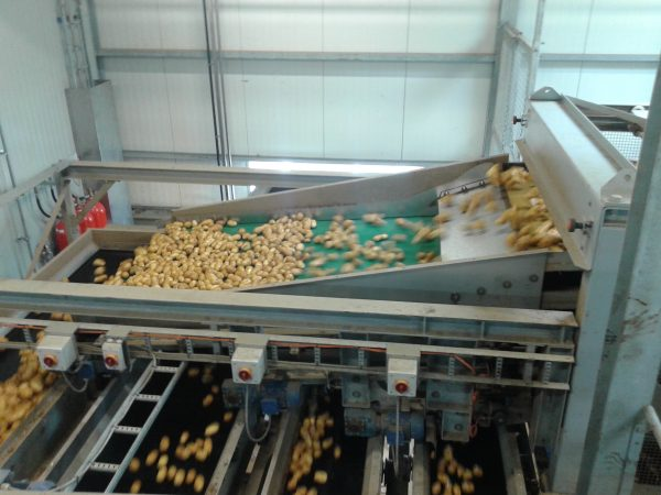 SWEPCO-115-Food-Machinery-Grease