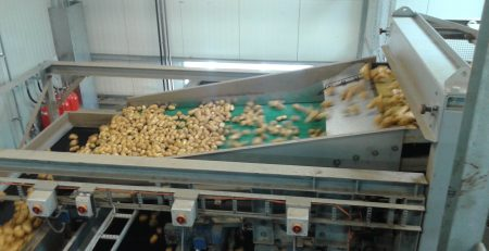 SWEPCO Food Grade Oliën